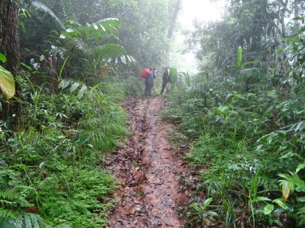 On the Trail - Trekking in Laos.